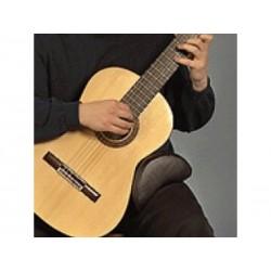 Coussin repose-guitare Standard